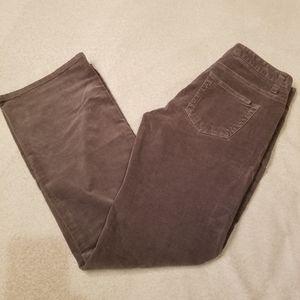 BANANA REPUBLIC Gray RYAN FIT 2S CORDUROY PANTS